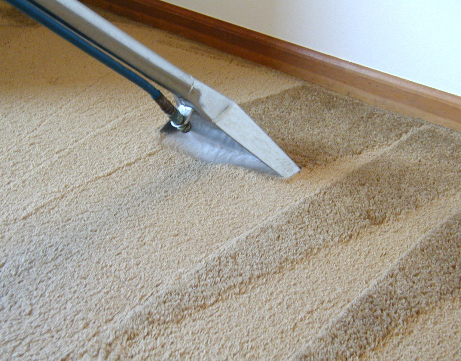 Best Carpet Cleaning Service in Chennai